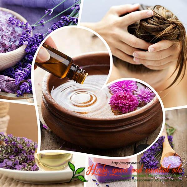 Использование эфирного масла лаванды для волос