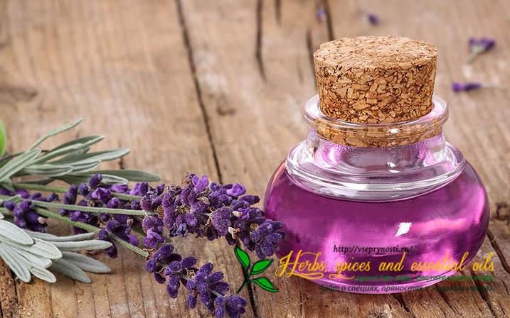 Масло лаванды свойства и применение для волос