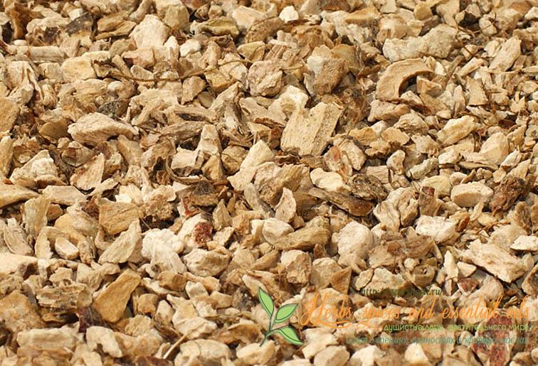 Аир (трава) – полезные свойства и применение аира, корень аира, настойка аира, аир при климаксе, аир при ангине. Аир болотный