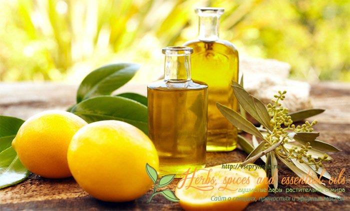 свойства эфирного масла бергамота