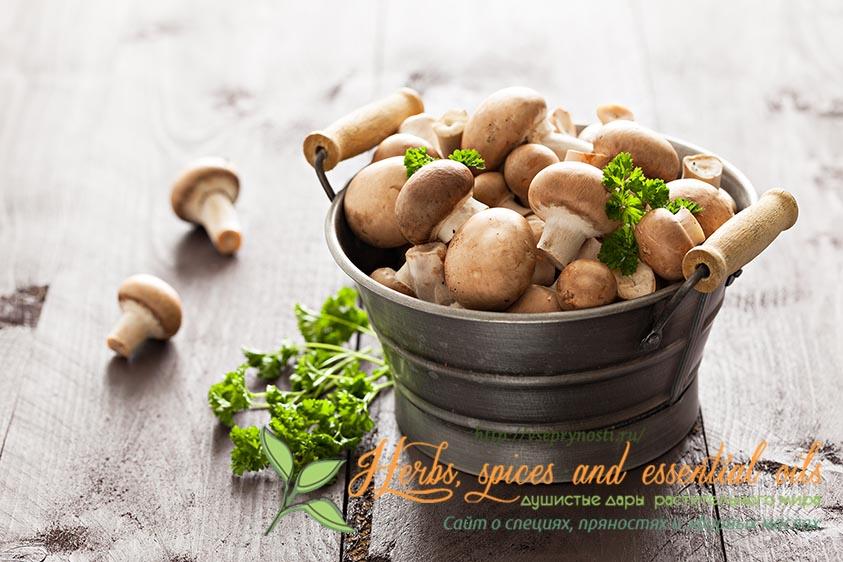 Специи для грибов