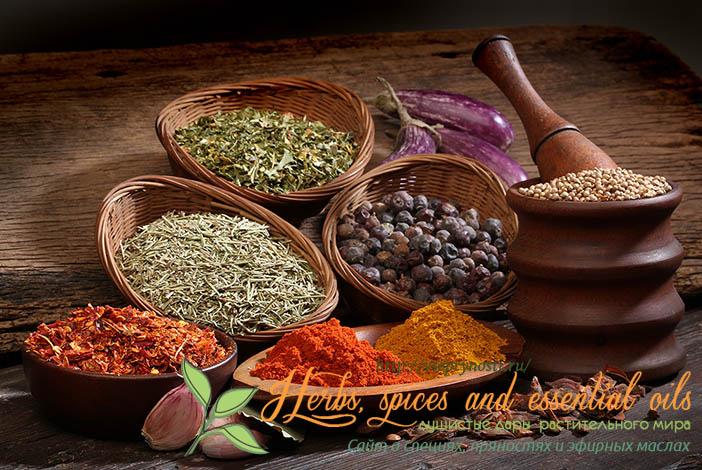 Индийская приправа карри