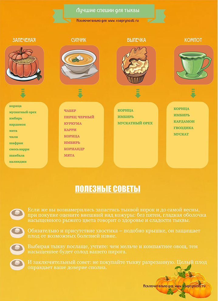 Инфографика специи для тыквы