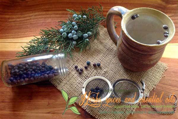 Чай с можжевельником
