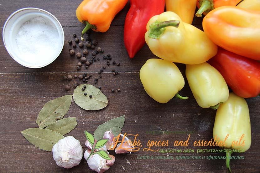 рецепты салатов из перца и помидоров