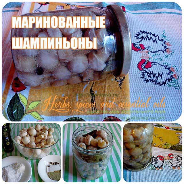 маринованные шампиньоны пошаговый рецепт картинками