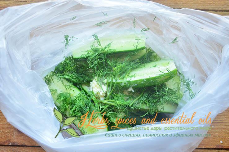 рецепт приготовления малосольных огурцов в пакете