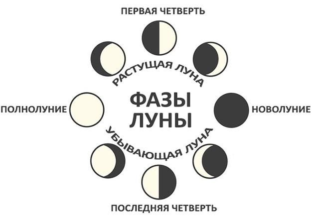 Лунный посевной календарь на февраль 2019