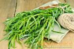 Миниатюра к статье Как применять драконью траву тархун (эстрагон) в кулинарии— секреты шеф-повара